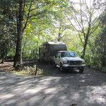 Deer lake sasquatch provincial park