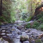 Goldstream provincial park
