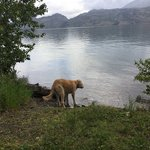 South campground okanagan lake provincial park