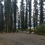 Marsh lake government camp