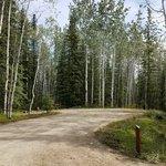 Moose creek government camp