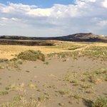 Bruneau dunes state park