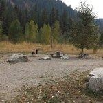 Elks flat campground