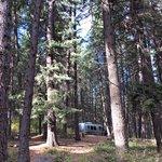 Farragut state park