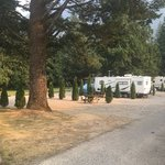 Wild rose rv park british columbia