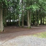 Whispering pines tent and rv park