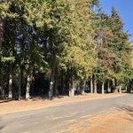 Centennial municipal campground