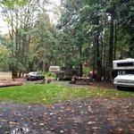 Cedar grove british columbia