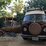 Cabo surf safari