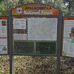 Wood lake apalachicola nf