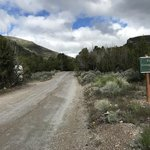 Snake creek road