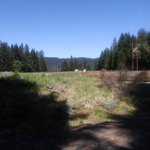 Clearwater forebay 2