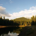 Clearwater forebay 1