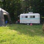 Blackwell horsecamp