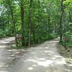 Diamond point campground