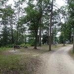Green lake campground interlochen sp