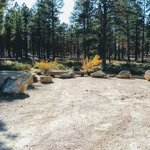 Coyote hollow equestrian campground