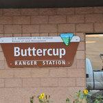 Buttercup blm