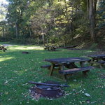 Collins cove horse campground