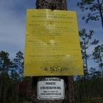 Blackwater river primitive recreation site