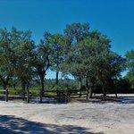 Bayou campground escribano point wma