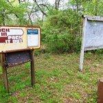 Hitchcock lake hunt camp