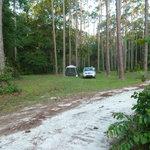 Cobb hunt camp