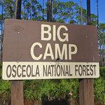 Big camp hunt camp