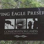 Flying eagle preserve