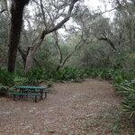 Potts preserve