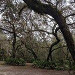 Potts preserve dee river campground