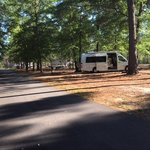 Vidalia sweet onion rv park