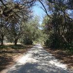 Ashley campground florida