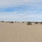 Dune buggy flats