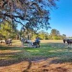 Hickory hammock campground