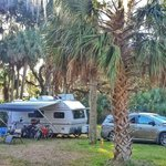 Hickory hammock campground
