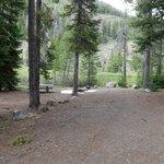 Park creek campground salmon challis nf