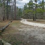Halfway creek trail campground