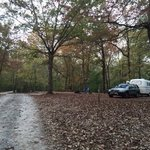 Cub creek lake campground natchez trace sp