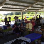 Mink creek group campground