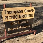 Thompson grove picnic area