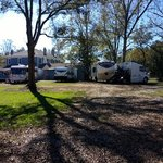 Nutty acres micro rv park