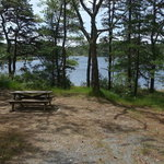 Curlew pond campground myles standish sf