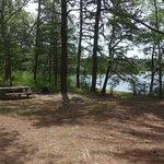 Curlew pond campground myles standish sf