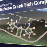 Jackson creek fish camp