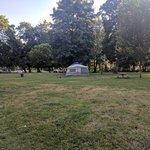 Pioneer park brownsville or