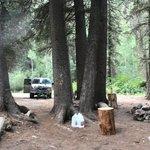 Up woods lake road