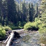North fork big wood river