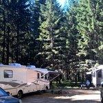 Cabin creek okanogan wenatchee nf