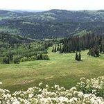 Heber mountain